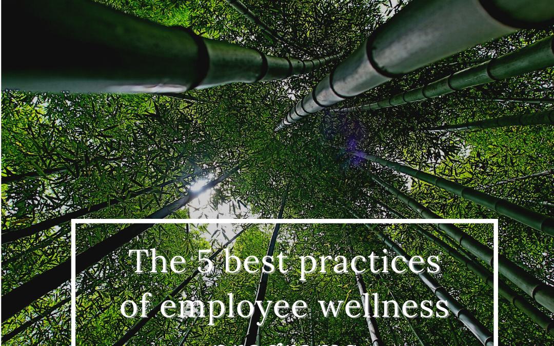 Top 5 best practices of employee wellness programs